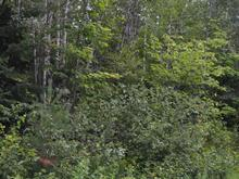Land for sale in Lac-Saint-Paul, Laurentides, 88, Chemin du Pérodeau, 22449230 - Centris