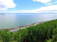 Terrain à vendre à Saint-Irénée, Capitale-Nationale, Chemin du Ruisseau-Jureux, 21387169 - Centris.ca