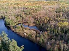 Terre à vendre à Waltham, Outaouais, Chemin de la Rivière-Noire, 24090376 - Centris