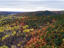 Land for sale in Waltham, Outaouais, Chemin de la Rivière-Noire, 24090376 - Centris.ca