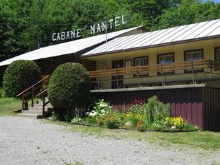 Bâtisse commerciale à vendre à Saint-Hippolyte, Laurentides, 312, Chemin du Lac-Bertrand, 21302322 - Centris.ca