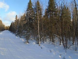 Terrain à vendre à Frontenac, Estrie, Chemin du Motel-sur-le-Lac, 13043978 - Centris.ca