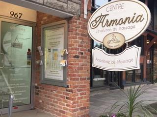 Commercial unit for rent in Mont-Tremblant, Laurentides, 967, Rue de Saint-Jovite, suite 1, 12642450 - Centris.ca