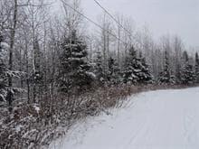 Terrain à vendre à Chute-Saint-Philippe, Laurentides, Chemin des Kayaks, 28013475 - Centris.ca