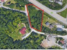 Terrain à vendre à Chelsea, Outaouais, Chemin de la Côte-d'Un-Mille, 20910617 - Centris.ca