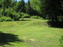 Terrain à vendre à Chénéville, Outaouais, 520, Route  315, 22565810 - Centris.ca
