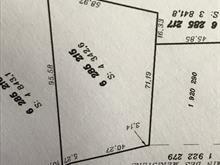 Terrain à vendre à Sainte-Anne-des-Lacs, Laurentides, Chemin des Merisiers, 11275554 - Centris
