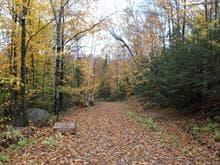 Terre à vendre à Saint-Émile-de-Suffolk, Outaouais, Chemin de la Montagne, 19155599 - Centris.ca