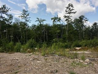 Land for sale in Trois-Rives, Mauricie, Chemin  Saint-Joseph, 17292293 - Centris.ca