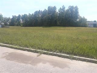 Land for sale in Mont-Saint-Michel, Laurentides, 1re Rue, 23673599 - Centris.ca