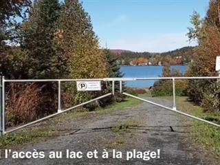 Lot for sale in Lac-Etchemin, Chaudière-Appalaches, Chemin des Lys, 23158107 - Centris.ca
