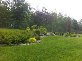 Lot for sale in Thetford Mines, Chaudière-Appalaches, 303, Rue  Caouette Ouest, 26308653 - Centris.ca