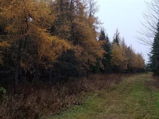 Land for sale in Lambton, Estrie, 7e Rang, 22015537 - Centris.ca