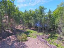 Lot for sale in Notre-Dame-du-Laus, Laurentides, Chemin des Lilas, 17166155 - Centris.ca