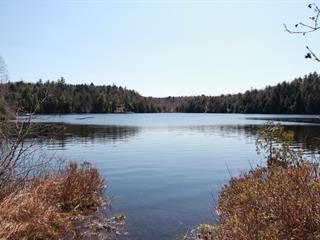 Lot for sale in Wentworth-Nord, Laurentides, Chemin  Mario, 9577758 - Centris.ca