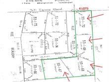 Terrain à vendre à Saint-Michel-des-Saints, Lanaudière, Chemin  Beaudry, 26263221 - Centris.ca