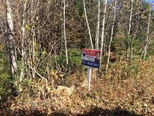 Lot for sale in Saint-Sauveur, Laurentides, Chemin du Mont-Bois-Vert, 12688594 - Centris.ca