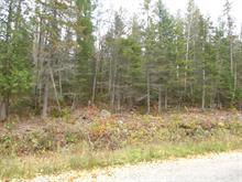 Lot for sale in Duhamel-Ouest, Abitibi-Témiscamingue, Chemin du Golf, 13240279 - Centris.ca
