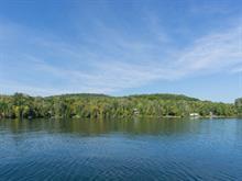 Terrain à vendre à Blue Sea, Outaouais, 46, Chemin du Domaine-Mont-Lac, 26243286 - Centris.ca