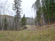 Terrain à vendre à Boileau, Outaouais, Chemin  Maskinongé, 25238941 - Centris.ca