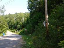 Terrain à vendre à Sainte-Adèle, Laurentides, boulevard  Mont-Rolland, 28882802 - Centris.ca