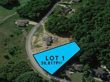 Lot for sale in Hudson, Montérégie, Rue  Mayfair, 17014247 - Centris.ca