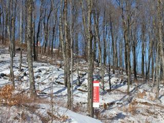 Terrain à vendre à Mont-Tremblant, Laurentides, 7, Chemin des Entailles, 14819840 - Centris.ca