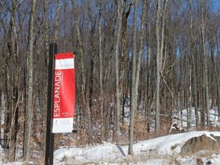 Terrain à vendre à Mont-Tremblant, Laurentides, 12, Chemin de la Goutterelle, 28832867 - Centris.ca