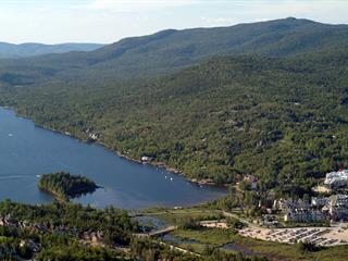 Terrain à vendre à Mont-Tremblant, Laurentides, Chemin des Skieurs, 9387114 - Centris.ca