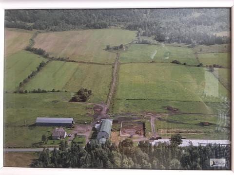Farm for sale in Notre-Dame-de-Ham, Centre-du-Québec, 51, 11e Rang, 20468964 - Centris.ca