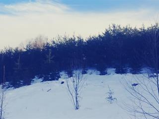 Terre à vendre à Lamarche, Saguenay/Lac-Saint-Jean, 8L, Rang  Caron, 24354367 - Centris.ca