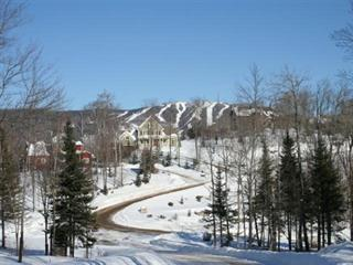 Lot for sale in Mont-Tremblant, Laurentides, 2, Chemin des Entailles, 11267967 - Centris.ca