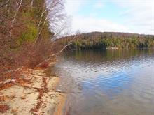 Terrain à vendre à Ferme-Neuve, Laurentides, 491, Chemin du Lac-Major, 23800130 - Centris.ca