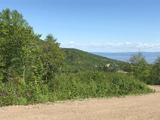 Terrain à vendre à Petite-Rivière-Saint-François, Capitale-Nationale, 19, Chemin  Onésime-Tremblay, 26862123 - Centris.ca