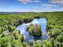 Chalet à vendre à Grandes-Piles, Mauricie, 100, Lac  Castor, 9949470 - Centris.ca