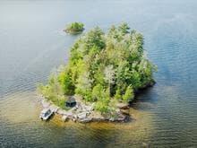 Lot for sale in Lac-Simon, Outaouais, 1400, Île 53, 28828521 - Centris.ca