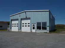 Bâtisse commerciale à vendre à Gaspé, Gaspésie/Îles-de-la-Madeleine, 514, boulevard du Griffon, 25285226 - Centris.ca