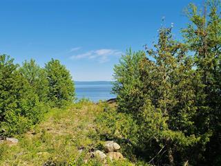 Terrain à vendre à Petite-Rivière-Saint-François, Capitale-Nationale, Chemin du Trait-Carré, 9008104 - Centris.ca