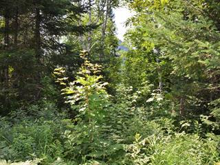 Terrain à vendre à Lac-Supérieur, Laurentides, Chemin du Lac-Supérieur, 22136685 - Centris.ca
