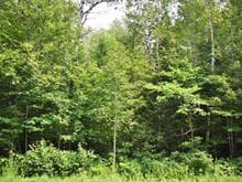 Terre à vendre à Lac-Supérieur, Laurentides, Chemin du Lac-Supérieur, 11651110 - Centris.ca