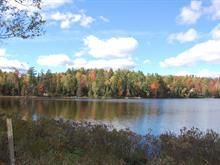 Terrain à vendre à Disraeli - Paroisse, Chaudière-Appalaches, 2270, Chemin du Lac-de-l'Est, 25221943 - Centris.ca