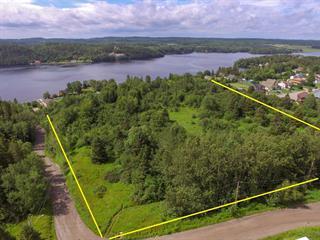 Lot for sale in Saguenay (Shipshaw), Saguenay/Lac-Saint-Jean, 20181, Chemin de la Rive, 23993860 - Centris.ca