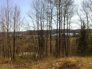 Lot for sale in Bowman, Outaouais, Chemin  Faubert, 25136385 - Centris.ca