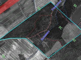 Land for sale in Saint-Félix-de-Kingsey, Centre-du-Québec, 4e Rang, 25683625 - Centris.ca