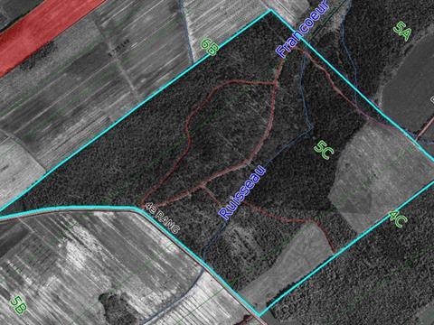 Terre à vendre à Saint-Félix-de-Kingsey, Centre-du-Québec, 4e Rang, 25683625 - Centris.ca