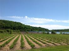 Farm for sale in Mont-Laurier, Laurentides, 2926, Montée des Soucy, 15654294 - Centris.ca