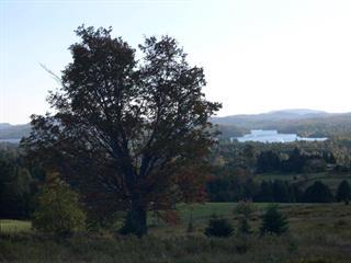 Terrain à vendre à La Minerve, Laurentides, 9, Chemin des Versants, 23375592 - Centris.ca