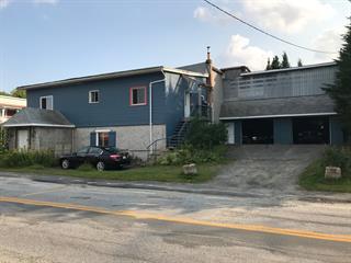 Maison à vendre à Saint-Fortunat, Chaudière-Appalaches, 113, Rue  Principale, 15416365 - Centris.ca