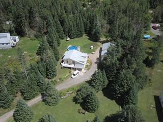 Maison à vendre à Amherst, Laurentides, 202, Chemin  Bourassa, 24297320 - Centris.ca