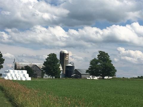 Farm for sale in Racine, Estrie, 218, Chemin du Nord, 26689726 - Centris.ca